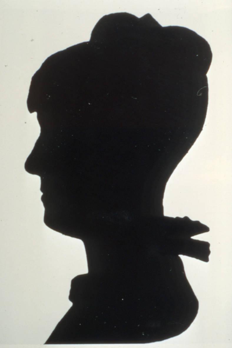 ann simpson davis silhouette